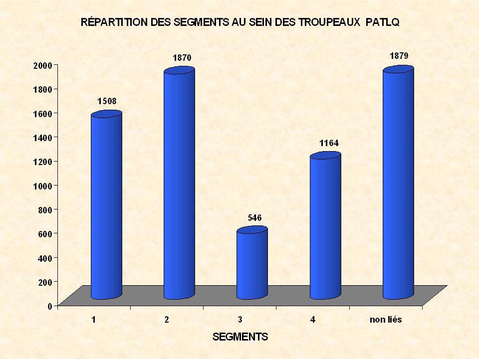 Importance du troupeau déclaré au MAPAQ et au PATLQ selon les segments de marché - 1999 30 35 40 45 50 55 Nombre de vaches MAPAQ 47413940 PATLQ 473938 Segment 1Segment 2Segment 3Segment 4 Source: Troupeaux CIAQ-PATLQ-MAPAQ.