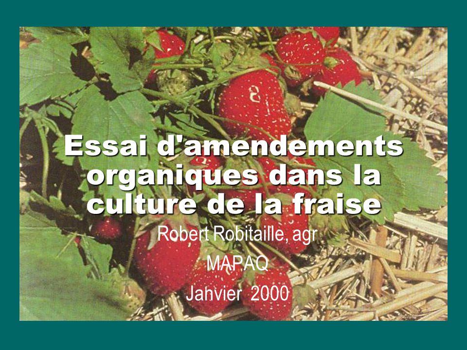 Essai d'amendements organiques dans la culture de la fraise Robert Robitaille, agr MAPAQ Janvier 2000
