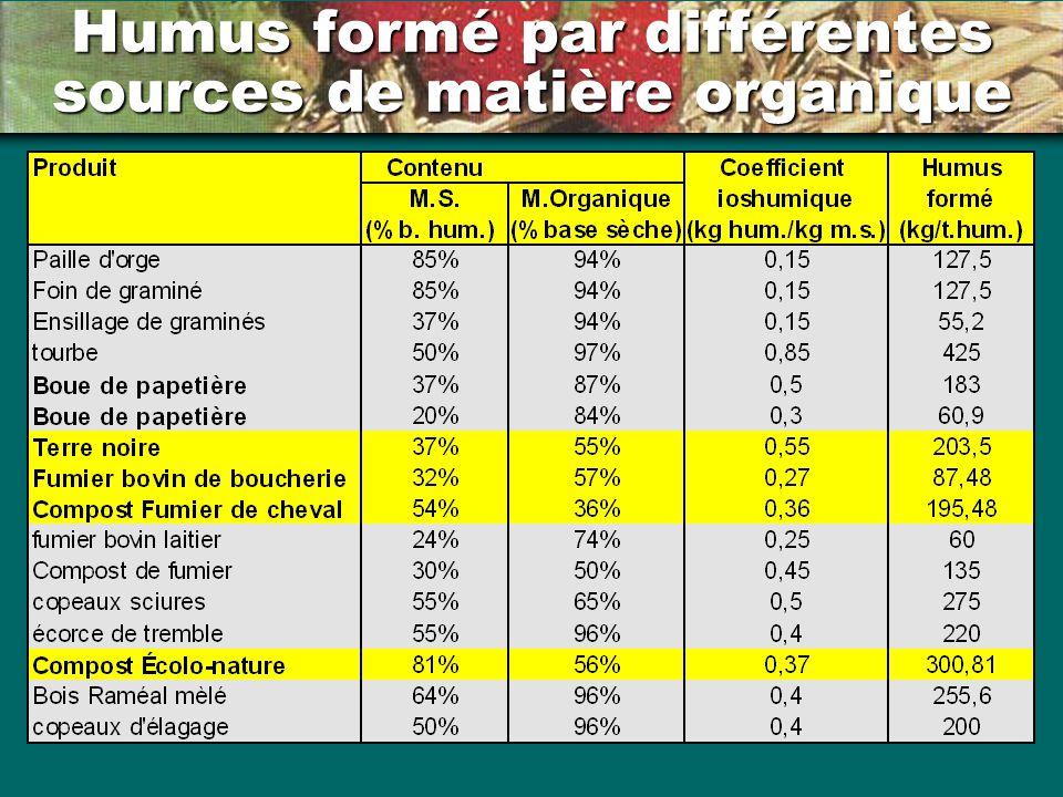 Humus formé par différentes sources de matière organique