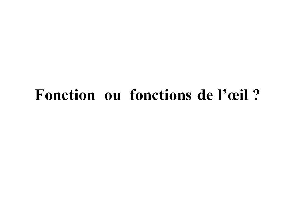 Fonction ou fonctions de lœil ?