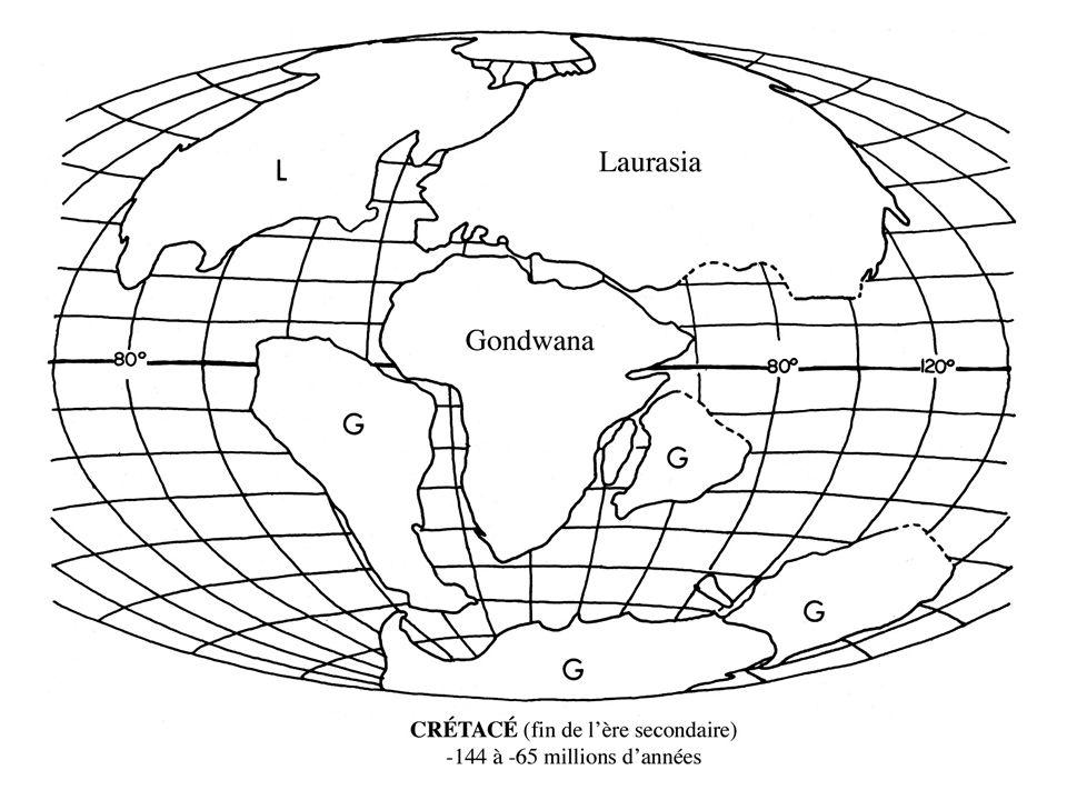 Apomorphies des mammifères : origine des poils et des mamelles