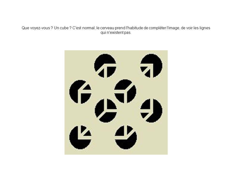 Que voyez-vous ? Un cube ? C'est normal, le cerveau prend l'habitude de compléter l'image, de voir les lignes qui n'existent pas.