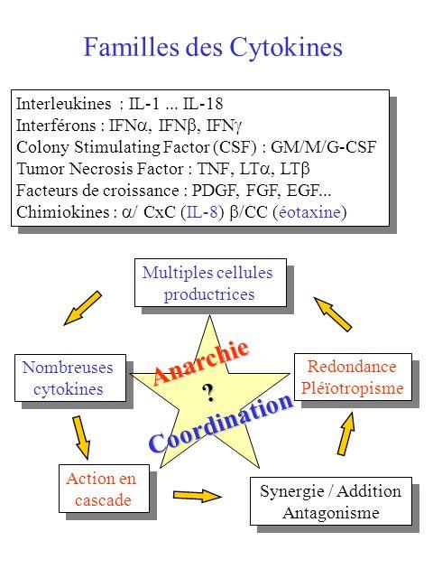 Interleukines : IL-1... IL-18 Interférons : IFN, IFN, IFN Colony Stimulating Factor (CSF) : GM/M/G-CSF Tumor Necrosis Factor : TNF LT, LT Facteurs de