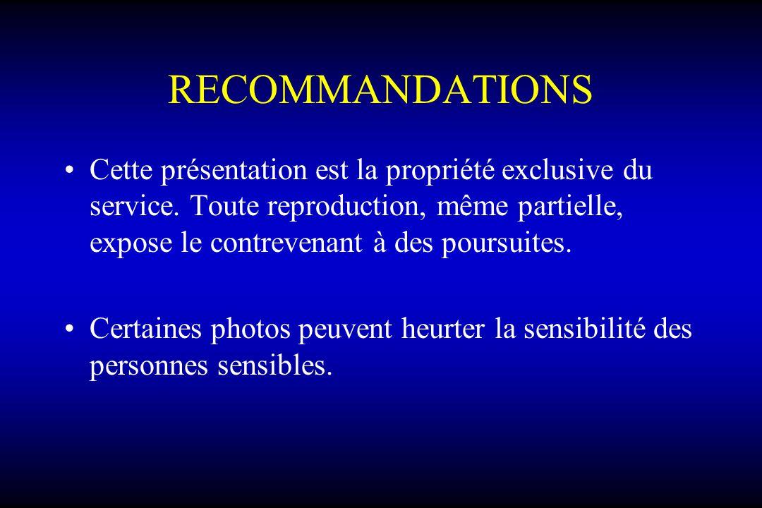 RECOMMANDATIONS Cette présentation est la propriété exclusive du service. Toute reproduction, même partielle, expose le contrevenant à des poursuites.