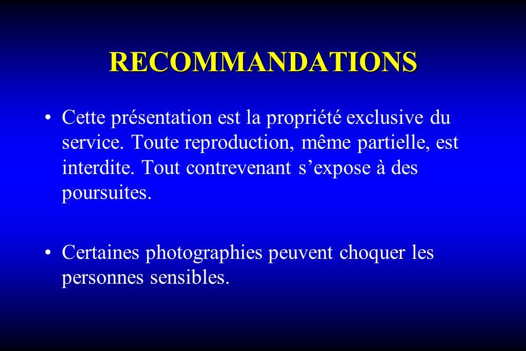 RECOMMANDATIONS Cette présentation est la propriété exclusive du service. Toute reproduction, même partielle, est interdite. Tout contrevenant sexpose