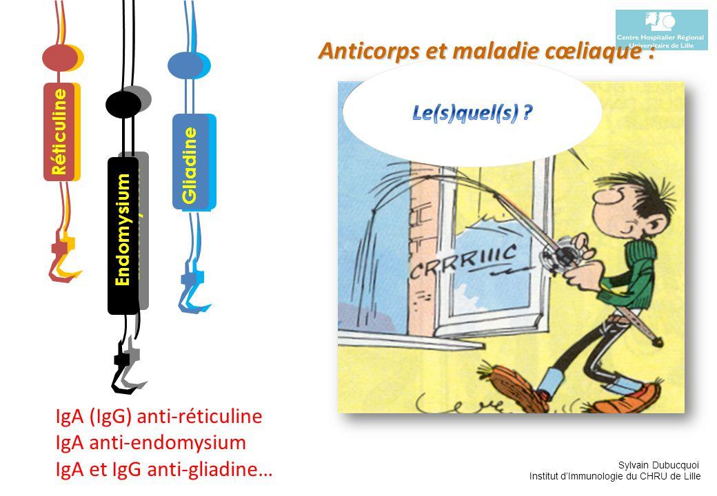 Sylvain Dubucquoi Institut dImmunologie du CHRU de Lille IgA (IgG) anti-réticuline IgA anti-endomysium IgA et IgG anti-gliadine… Réticuline Gliadine E