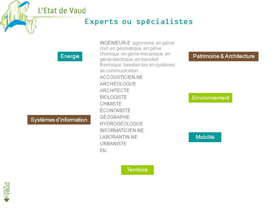 Experts ou spécialistes Energie Environnement Patrimoine & Architecture Mobilité Systèmes dinformation Territoire INGÉNIEUR-E agronome, en génie civil