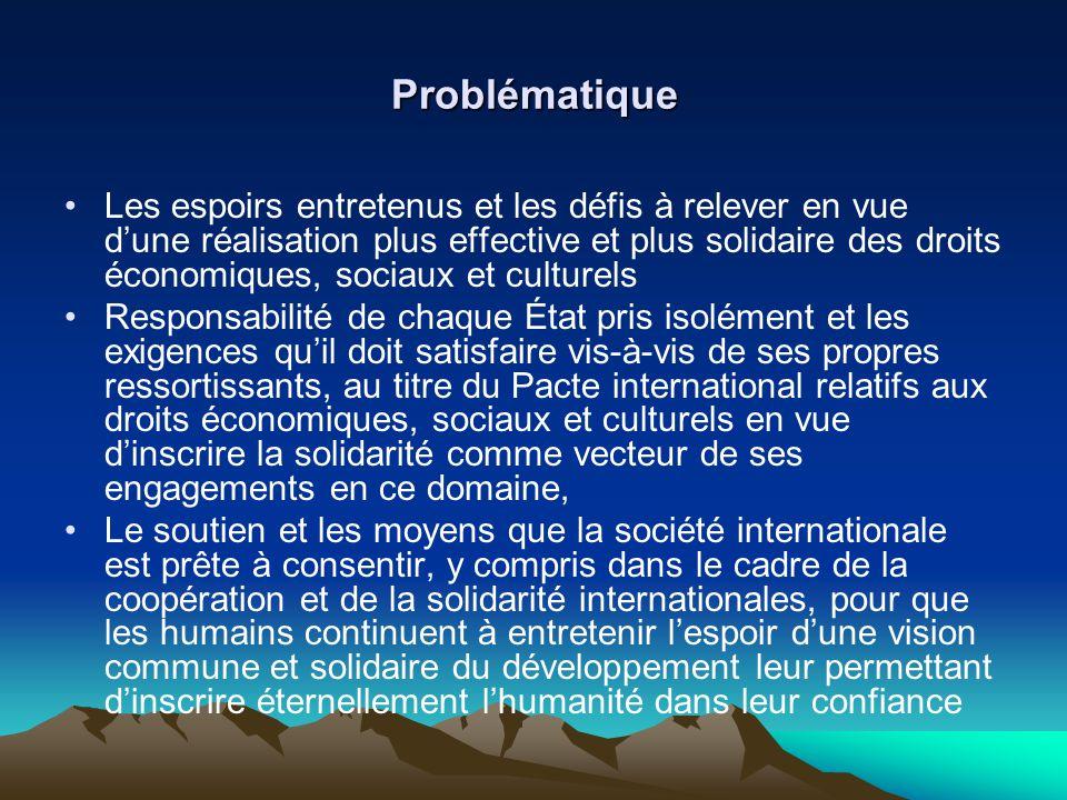 Problématique Les espoirs entretenus et les défis à relever en vue dune réalisation plus effective et plus solidaire des droits économiques, sociaux e