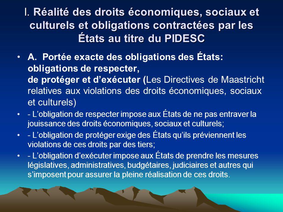I. Réalité des droits économiques, sociaux et culturels et obligations contractées par les États au titre du PIDESC A. Portée exacte des obligations d