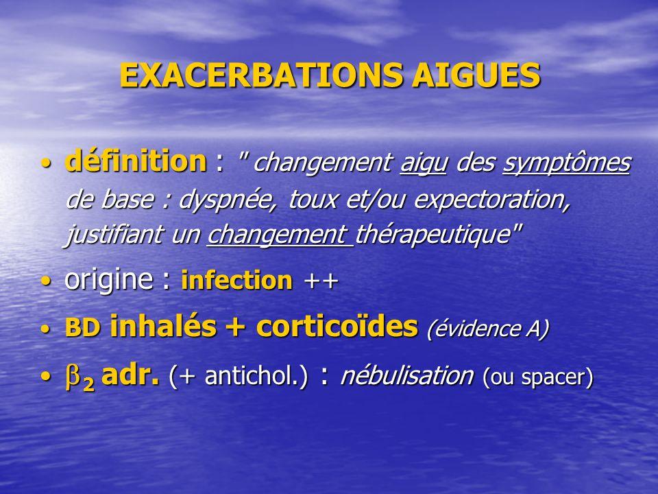 EXACERBATIONS AIGUES définition :