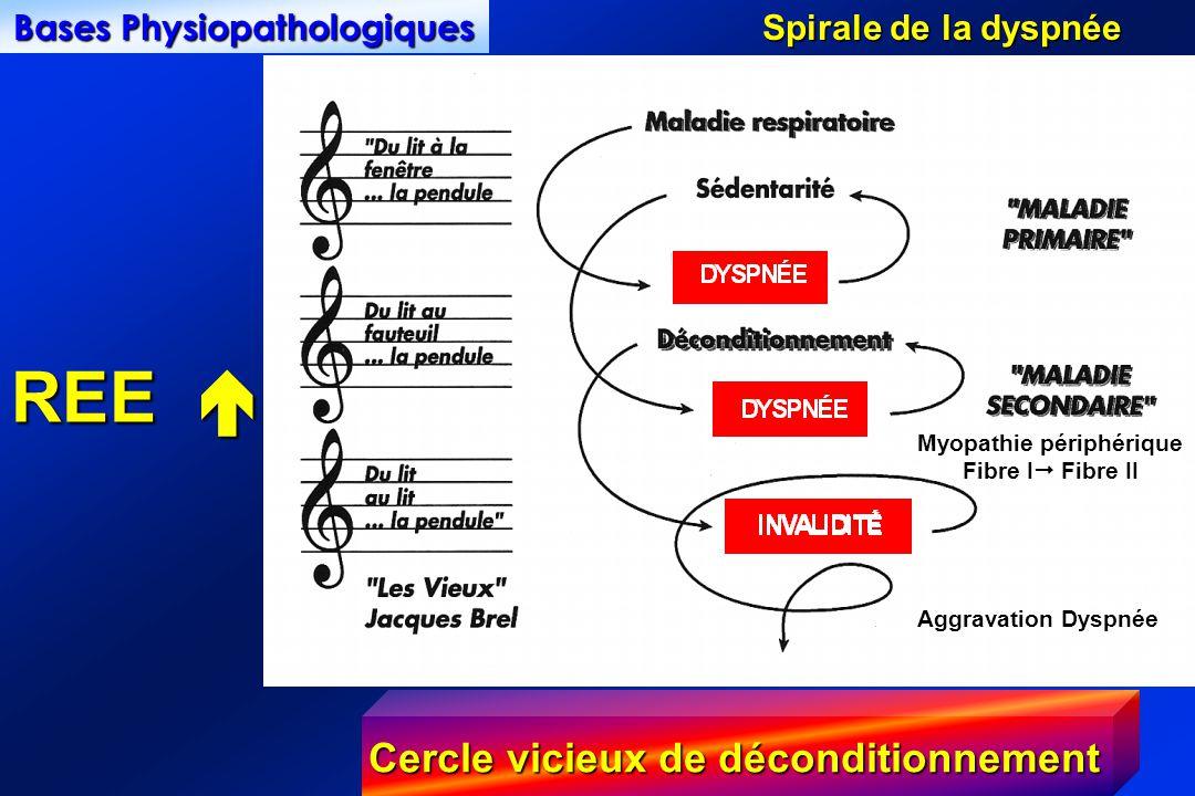 Bases Physiopathologiques Spirale de la dyspnée Myopathie périphérique Fibre I Fibre II Aggravation Dyspnée Cercle vicieux de déconditionnement REE REE