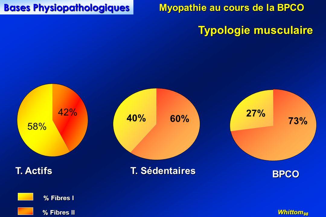 % Fibres I % Fibres II BPCO 73% 27% T. Sédentaires 60% 40% Typologie musculaire Myopathie au cours de la BPCO Bases Physiopathologiques T. Actifs Whit