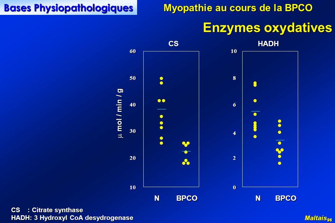 10 20 0 2 30 4 40 50 60 6 8 10 l l l l l l l l l l l l l l l l l l l l l l l l l l l l l l l l l l N BPCO CSHADH mol / min / g mol / min / g Maltais 96 Enzymes oxydatives CS : Citrate synthase HADH: 3 Hydroxyl CoA desydrogenase Myopathie au cours de la BPCO Bases Physiopathologiques