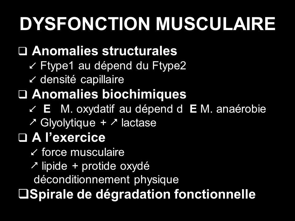 DYSFONCTION MUSCULAIRE Anomalies structurales Ftype1 au dépend du Ftype2 densité capillaire Anomalies biochimiques E M. oxydatif au dépend d E M. anaé