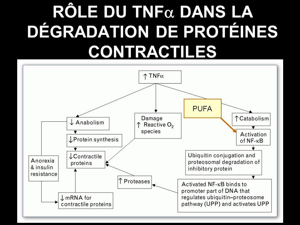 RÔLE DU TNF DANS LA DÉGRADATION DE PROTÉINES CONTRACTILES PUFA