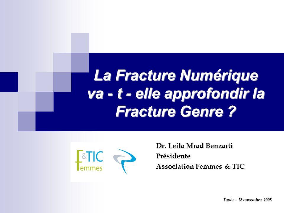 La Fracture Numérique va - t - elle approfondir la Fracture Genre .