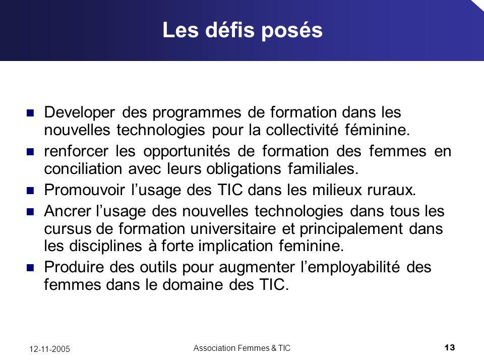 Association Femmes & TIC13 12-11-2005 Les défis posés Developer des programmes de formation dans les nouvelles technologies pour la collectivité féminine.