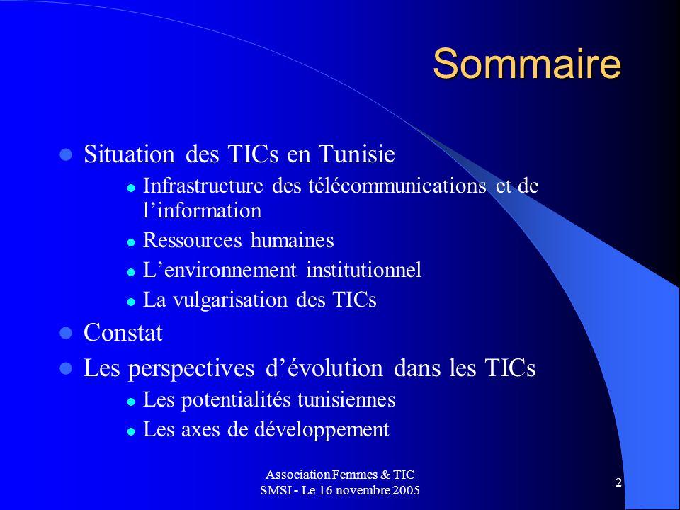Association Femmes & TIC SMSI - Le 16 novembre 2005 2 Sommaire Situation des TICs en Tunisie Infrastructure des télécommunications et de linformation Ressources humaines Lenvironnement institutionnel La vulgarisation des TICs Constat Les perspectives dévolution dans les TICs Les potentialités tunisiennes Les axes de développement