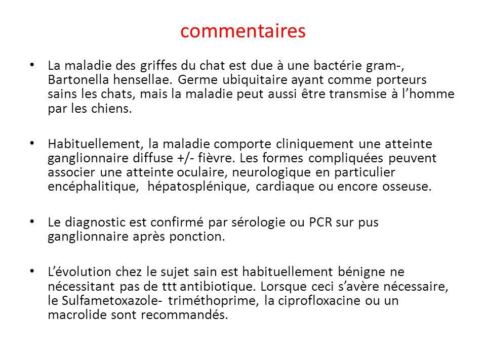 commentaires La maladie des griffes du chat est due à une bactérie gram-, Bartonella hensellae. Germe ubiquitaire ayant comme porteurs sains les chats