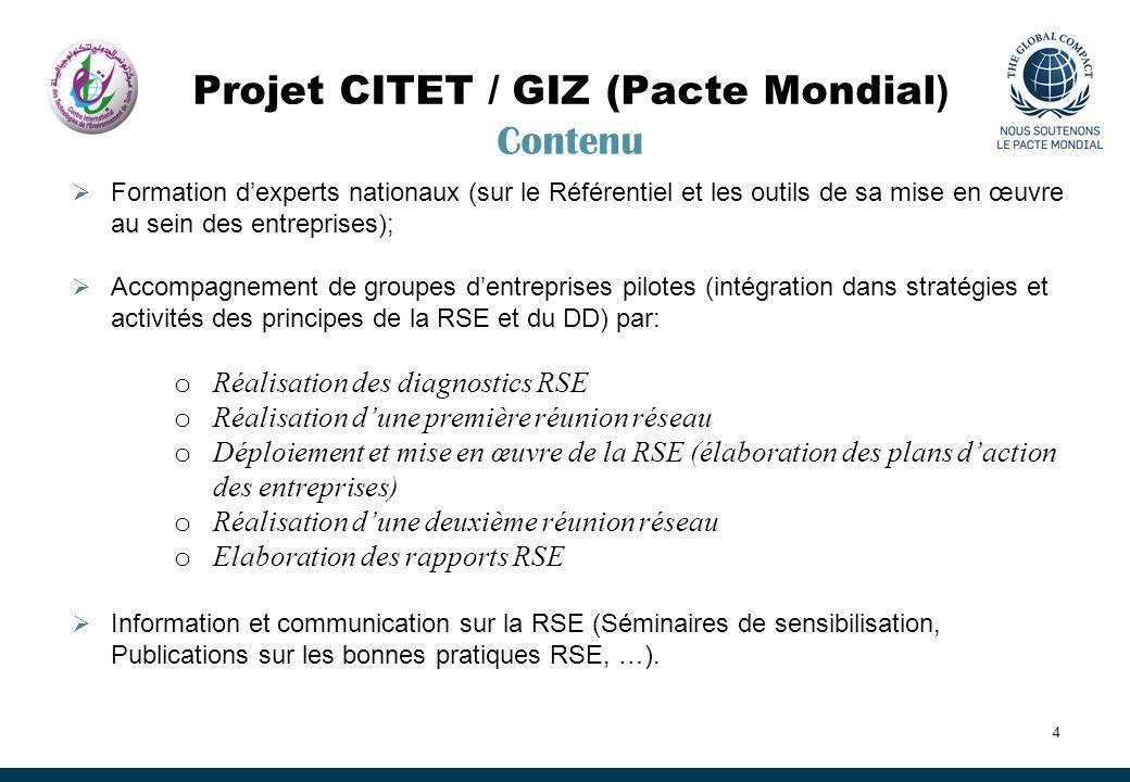 Projet CITET / GIZ (Pacte Mondial ) Contenu Formation dexperts nationaux (sur le Référentiel et les outils de sa mise en œuvre au sein des entreprises