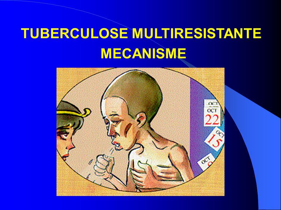 TUBERCULOSE MULTIRESISTANTE MECANISME