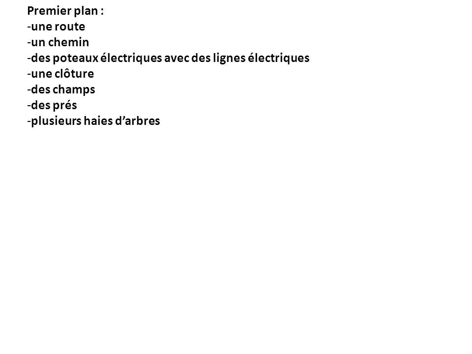 Premier plan : -une route -un chemin -des poteaux électriques avec des lignes électriques -une clôture -des champs -des prés -plusieurs haies darbres