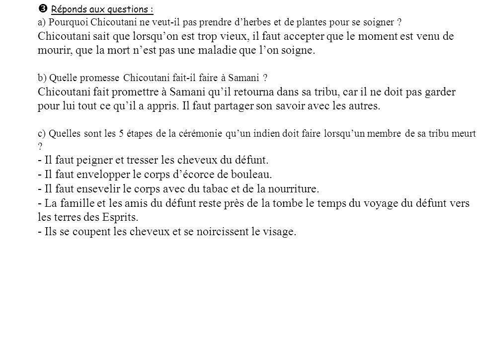 Réponds aux questions : a) Pourquoi Chicoutani ne veut-il pas prendre dherbes et de plantes pour se soigner .