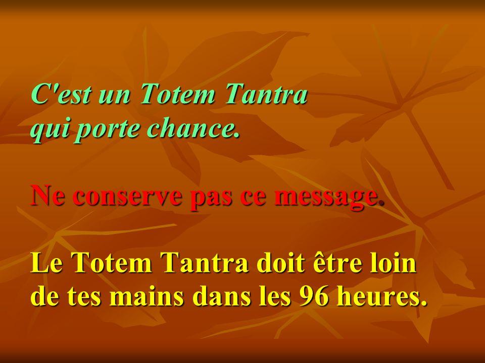 C'est un Totem Tantra qui porte chance. Ne conserve pas ce message. Le Totem Tantra doit être loin de tes mains dans les 96 heures. C'est un Totem Tan