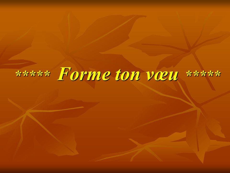 ***** Forme ton vœu *****