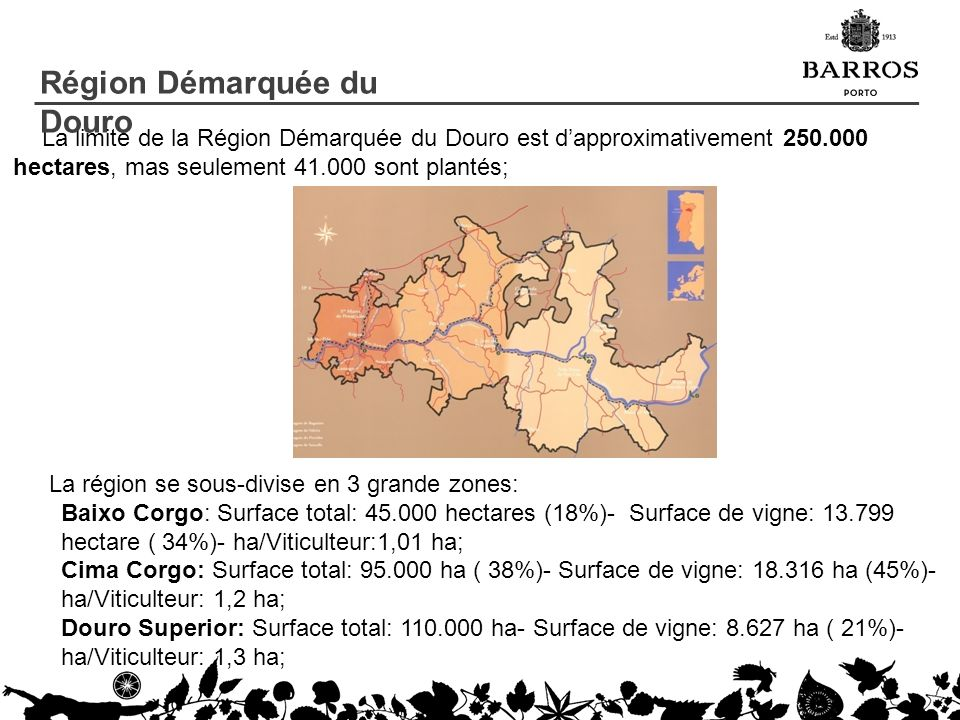 La limite de la Région Démarquée du Douro est dapproximativement 250.000 hectares, mas seulement 41.000 sont plantés; La région se sous-divise en 3 gr