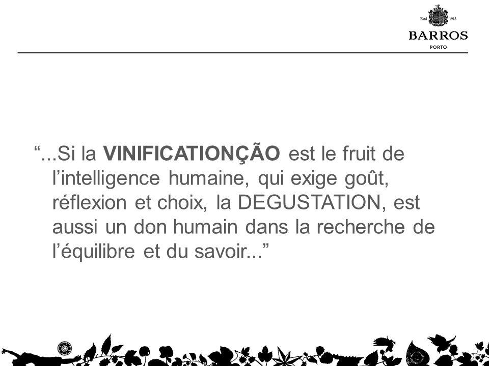 ...Si la VINIFICATIONÇÃO est le fruit de lintelligence humaine, qui exige goût, réflexion et choix, la DEGUSTATION, est aussi un don humain dans la re