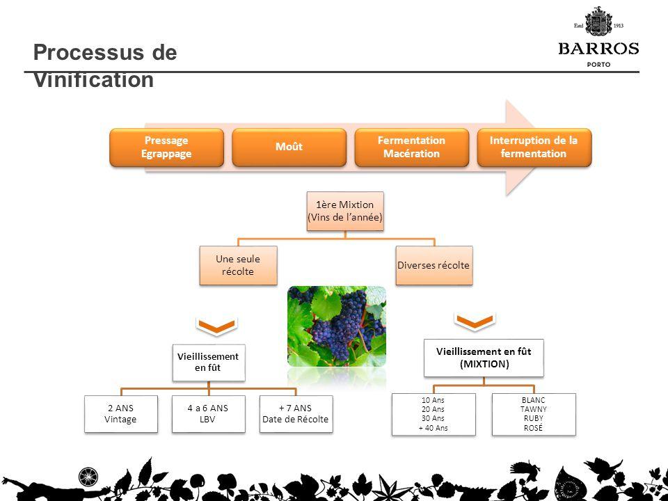 Processus de Vinification Pressage Egrappage Moût Fermentation Macération Interruption de la fermentation 1ère Mixtion (Vins de lannée) Une seule réco