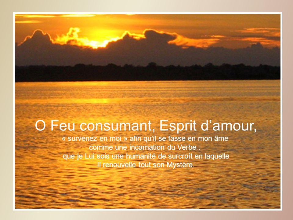O Feu consumant, Esprit damour, « survenez en moi » afin quil se fasse en mon âme comme une incarnation du Verbe : que je Lui sois une humanité de surcroît en laquelle Il renouvelle tout son Mystère.