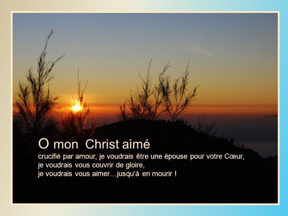 O mon Christ aimé crucifié par amour, je voudrais être une épouse pour votre Cœur, je voudrais vous couvrir de gloire, je voudrais vous aimer…jusquà en mourir !