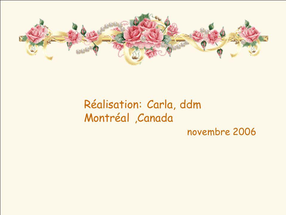 Béatification à Rome 27 avril 2003