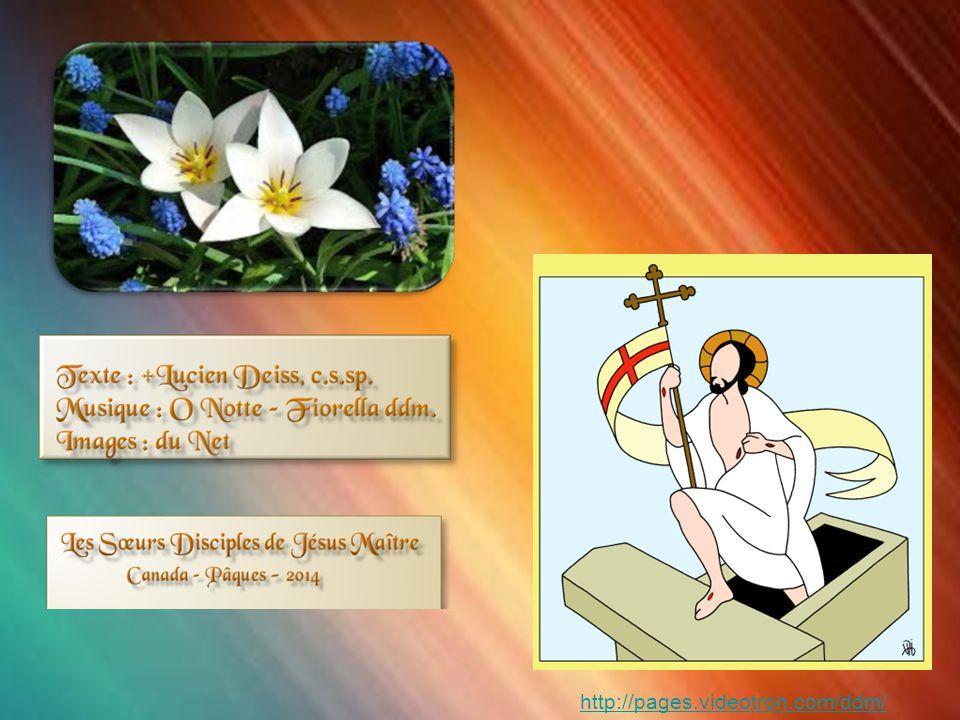« ….Accueillons la grâce de la Résurrection du Christ .