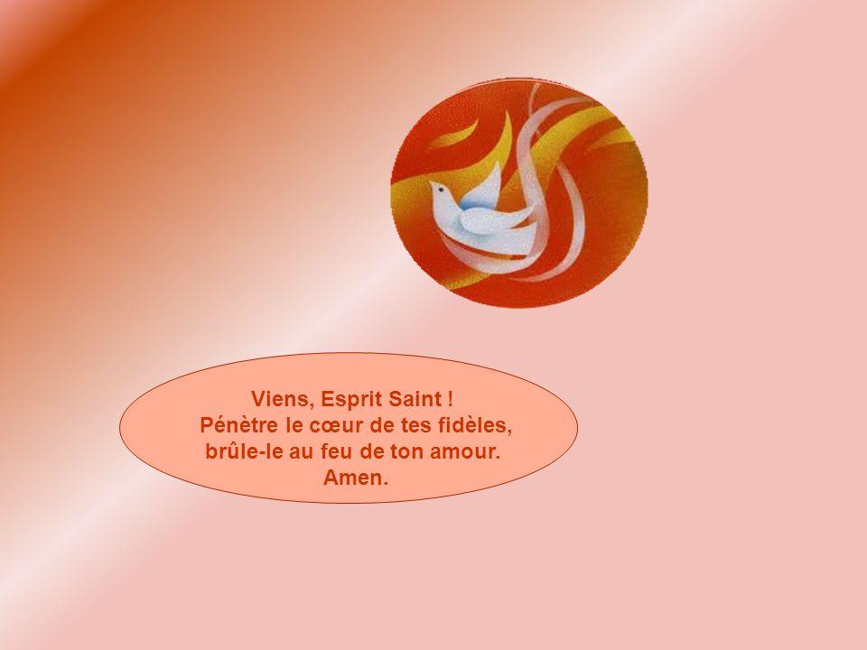 Viens, Esprit Saint ! Pénètre le cœur de tes fidèles, brûle-le au feu de ton amour. Amen.