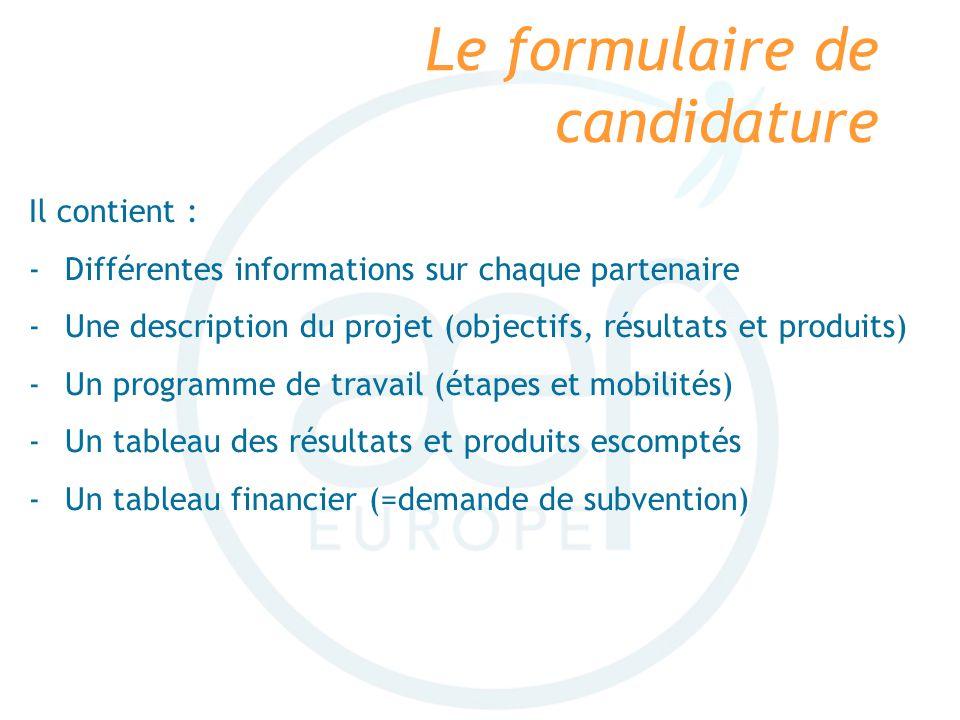Le formulaire de candidature Il contient : -Différentes informations sur chaque partenaire -Une description du projet (objectifs, résultats et produit