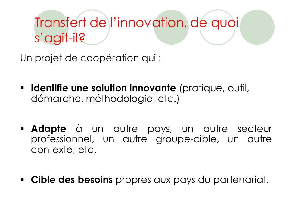 Le processus de transfert Nouveau(x) contexte(s)Solution innovante le processus de transfert = le projet - Public-cible - Pays - Secteur dactivité … - Outils - Méthodologie - Dispositif - Démarche …