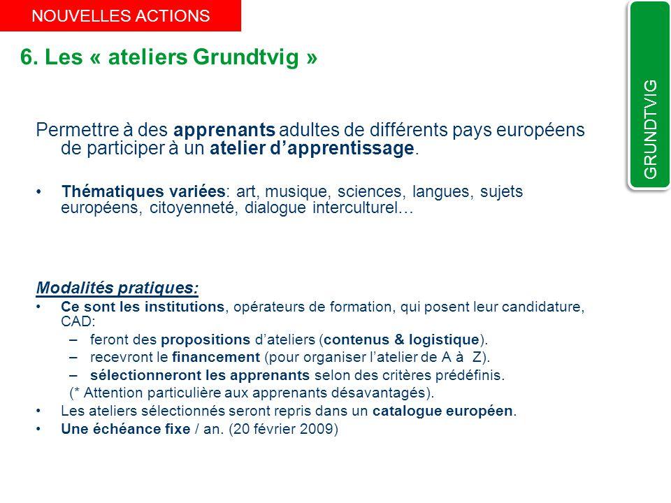 6. Les « ateliers Grundtvig » Permettre à des apprenants adultes de différents pays européens de participer à un atelier dapprentissage. Thématiques v