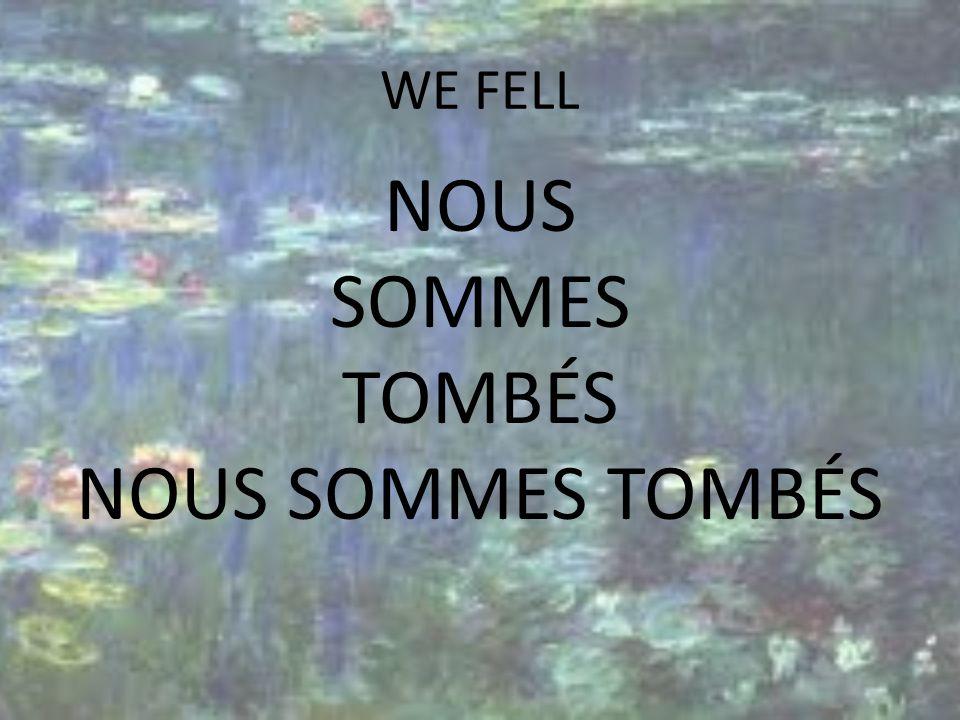 WE FELL NOUS SOMMES TOMBÉS NOUS SOMMES TOMBÉS