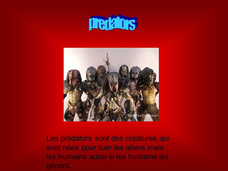 Les prédators sont des créatures qui sont nées pour tuer les aliens mais les humains aussi si les humains les gênent.