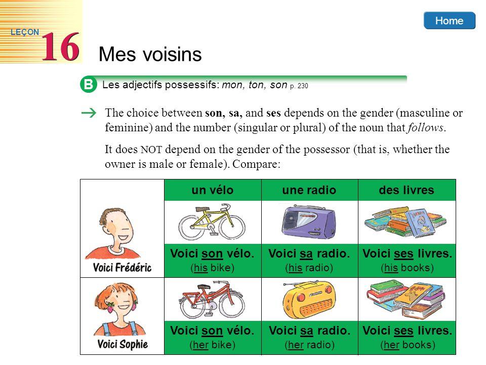Home Mes voisins 16 LEÇON B Les adjectifs possessifs: mon, ton, son p. 230 Voici son vélo. (his bike) un véloune radiodes livres Voici sa radio. (his