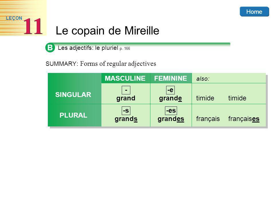 Home Le copain de Mireille 11 LEÇON B Les adjectifs: le pluriel p.