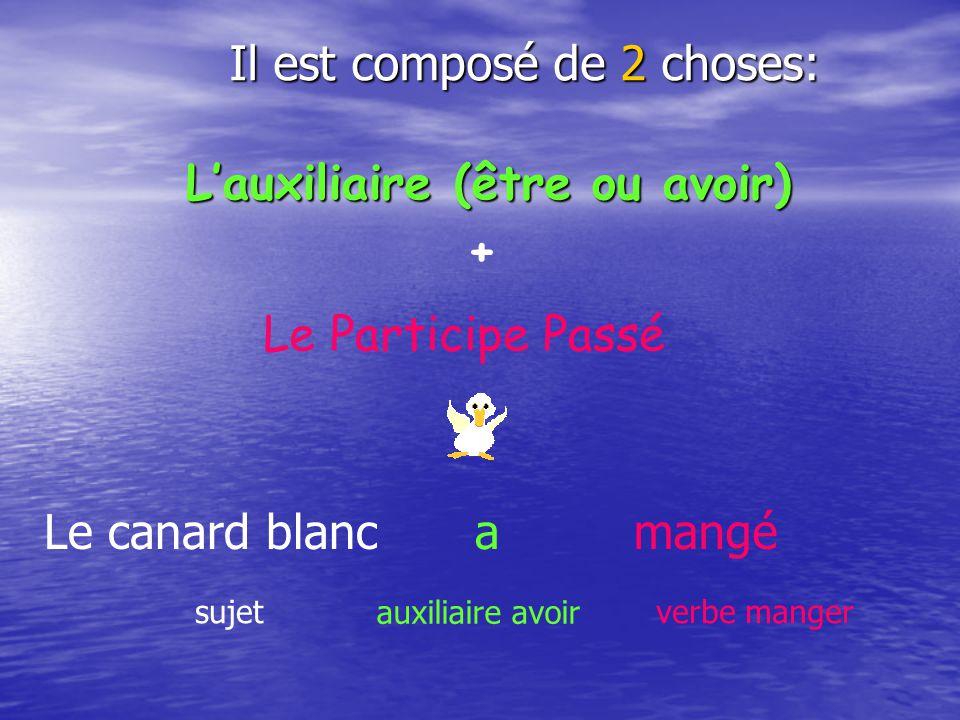 Lauxiliaire (être ou avoir) Le canard blancamangé sujet auxiliaire avoir verbe manger + Le Participe Passé Il est composé de 2 choses: