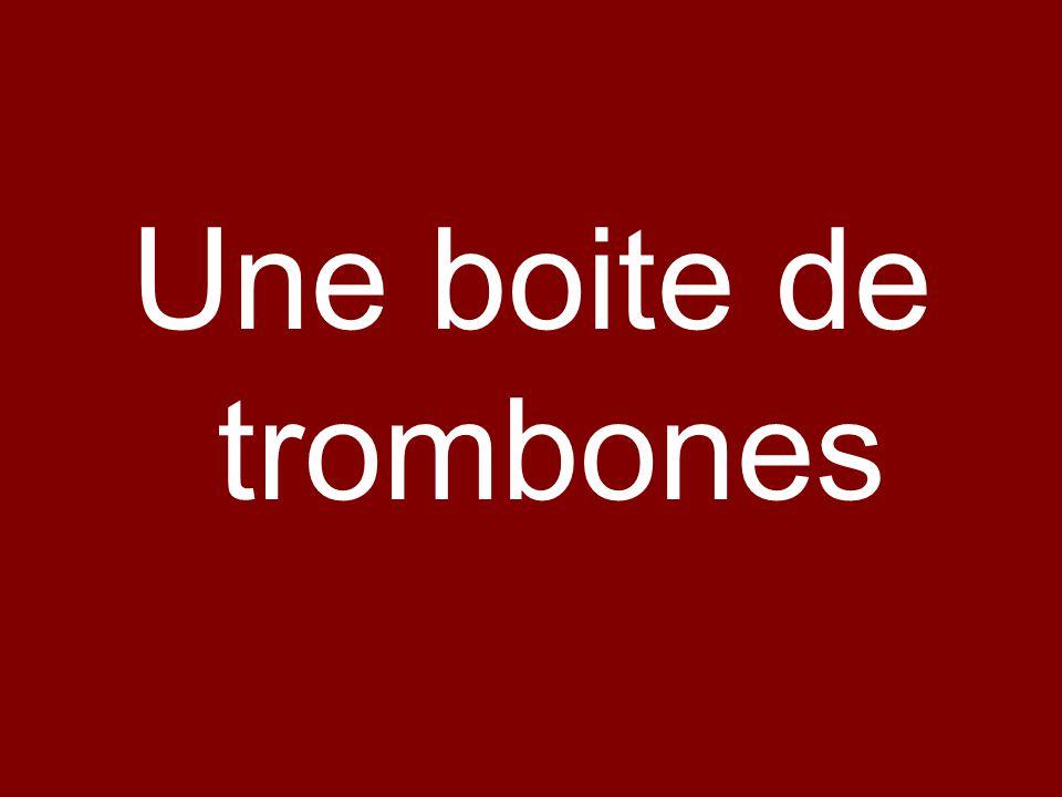 Une boite de trombones