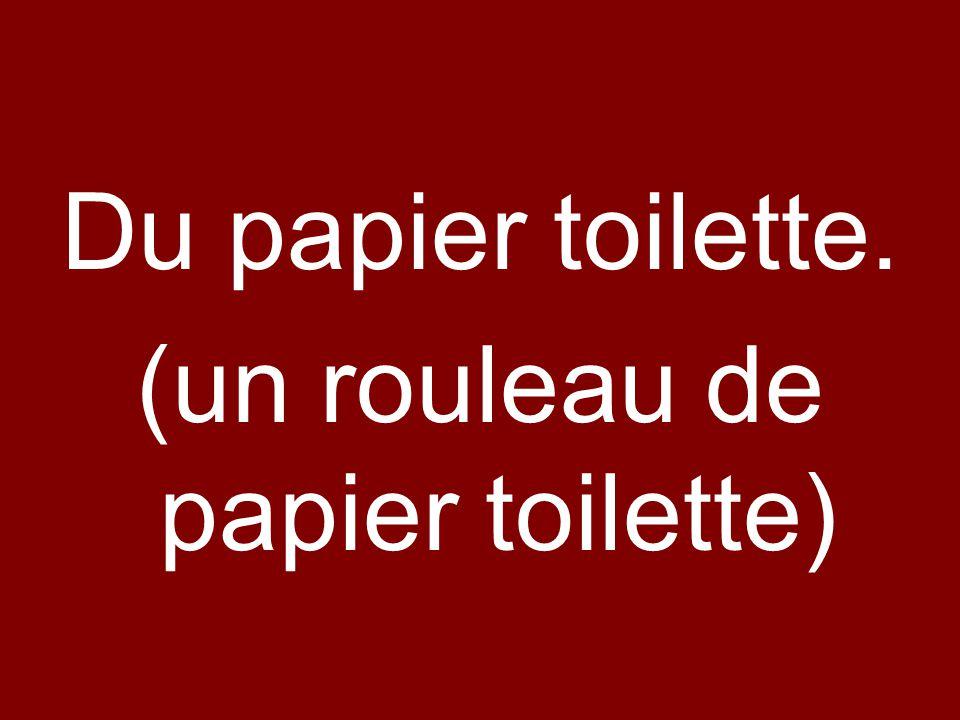 Du papier toilette. (un rouleau de papier toilette)