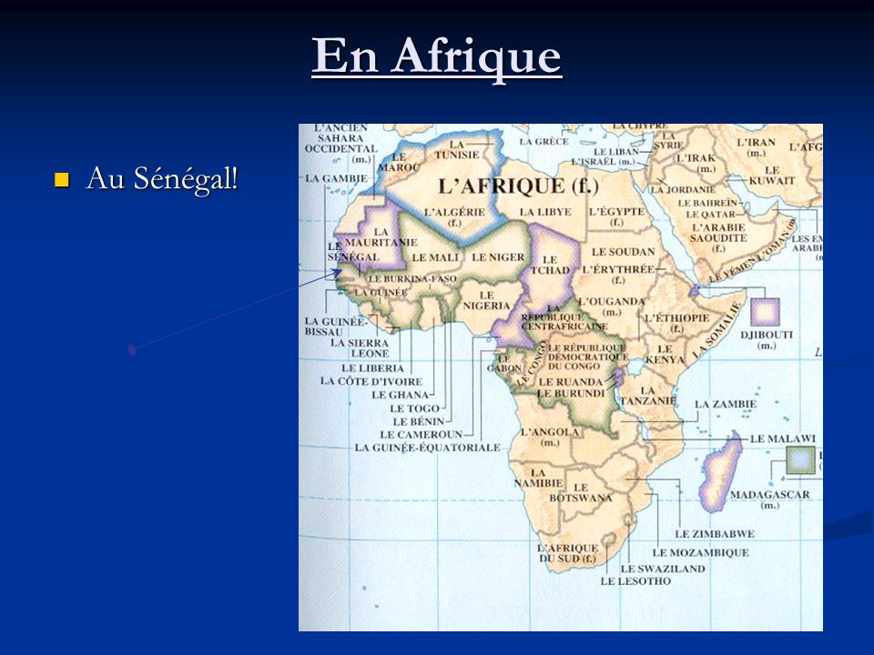 En Afrique Au Sénégal! Au Sénégal!