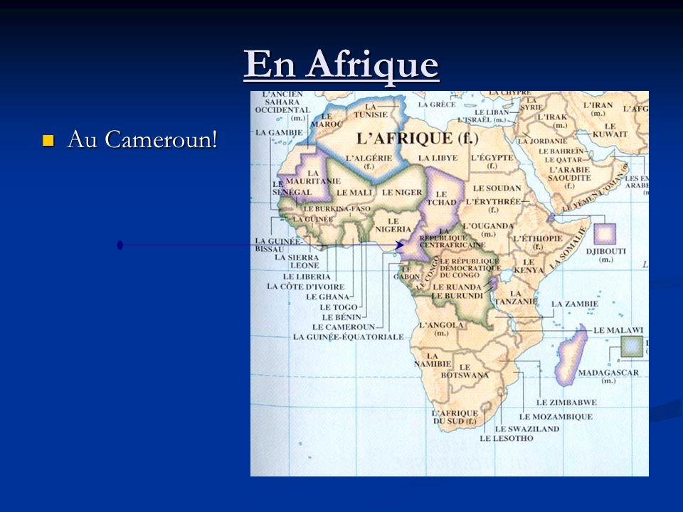 En Afrique Au Cameroun! Au Cameroun!