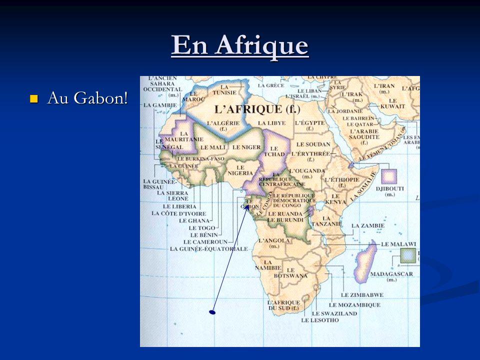 En Afrique Au Gabon! Au Gabon!
